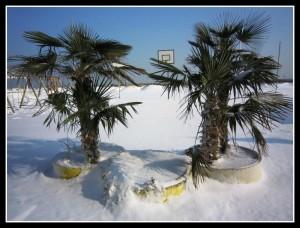 la spiaggia4